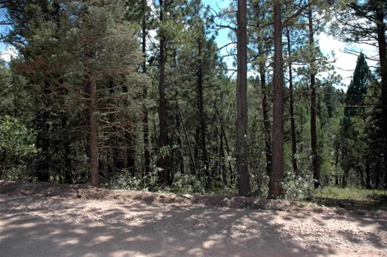 Lot 1552 Camino Real, Angel Fire, NM 87710