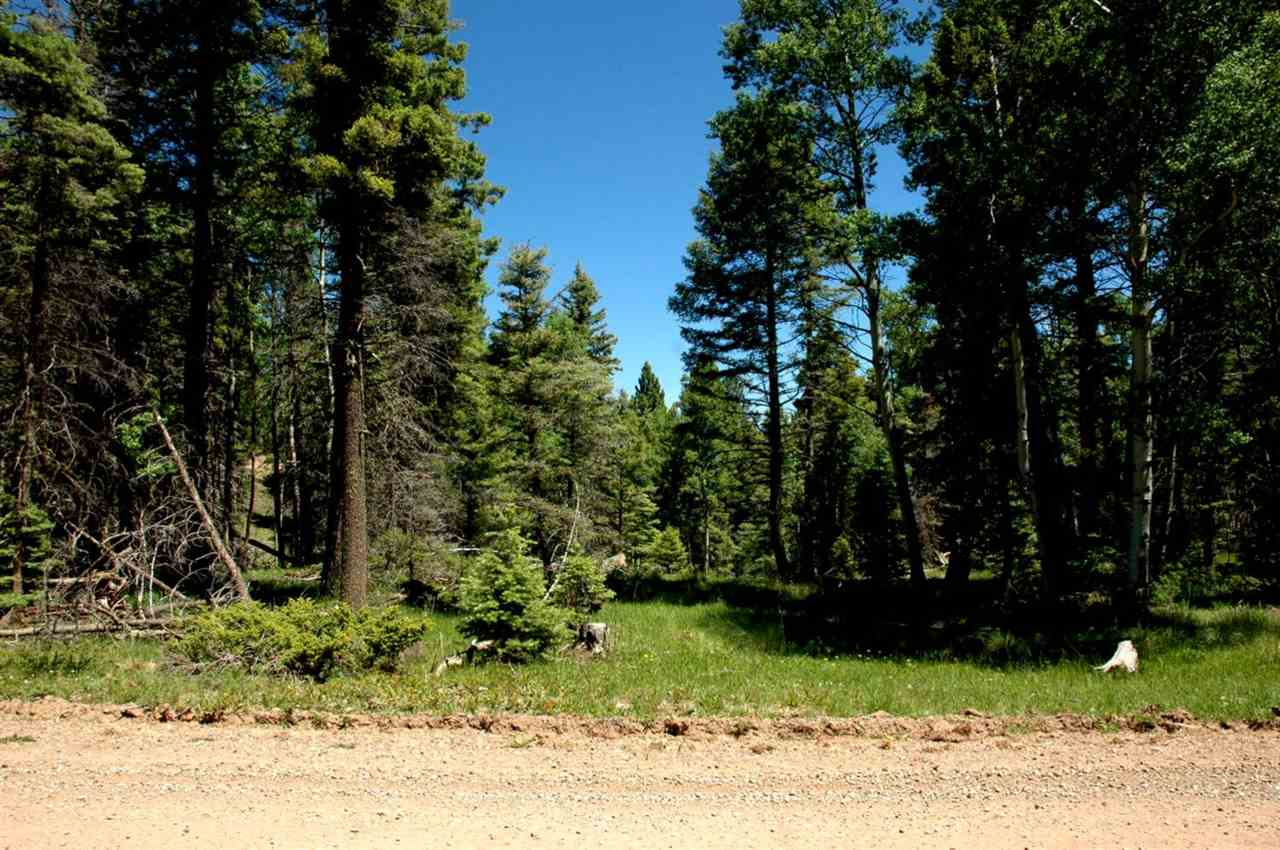 Lot 363 Vail Loop, Angel Fire, NM 87710