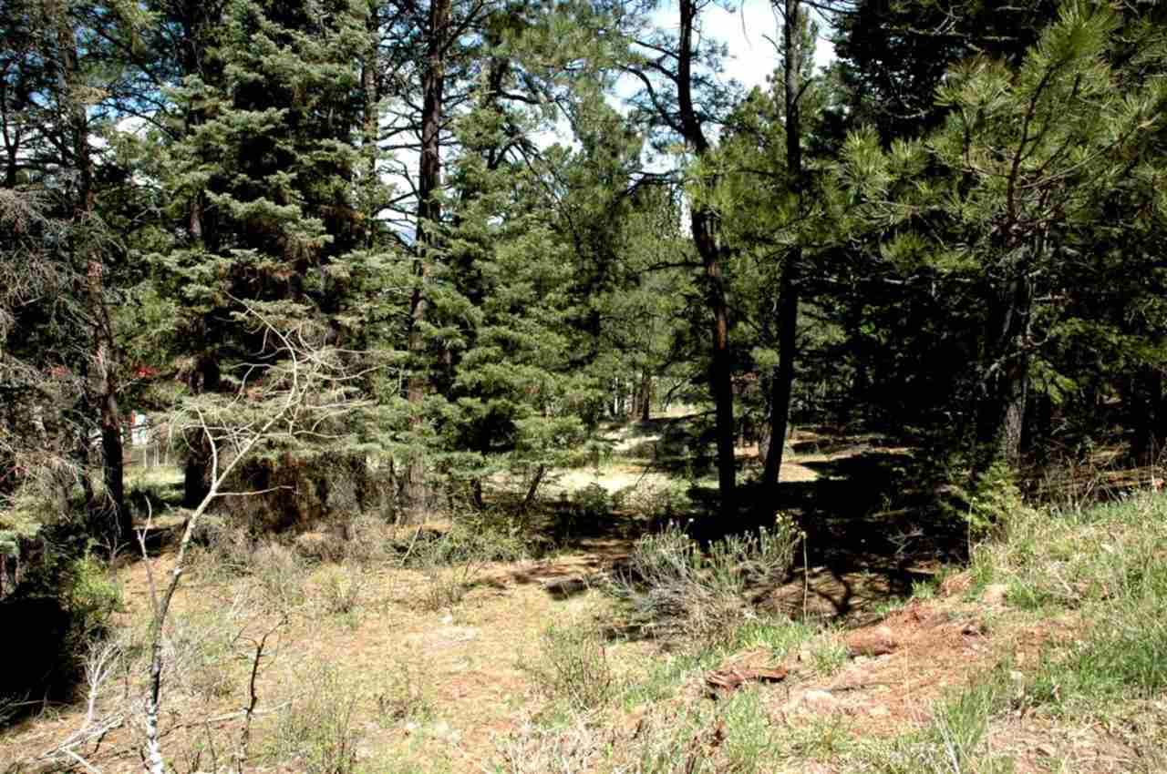 Lot 73 Mammouth Mountain Road, Angel Fire, NM 87710