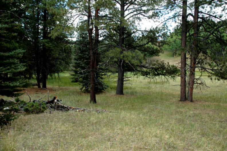 Lot 1183 Pleasant Valley Place, Angel Fire, NM 87710