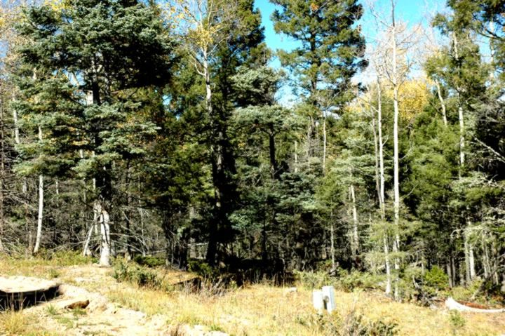 Lot 276 Vermejo Circle, Angel Fire, NM 87710