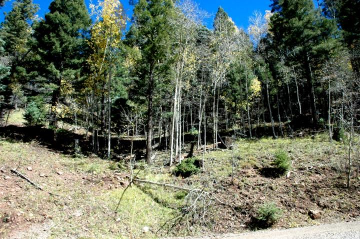 Lot 422 El Camino Real, Angel Fire, NM 87710