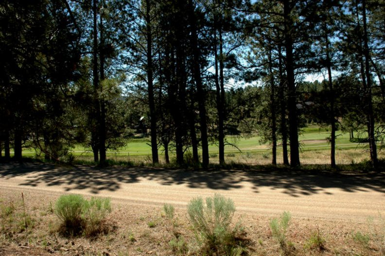 Lot 1242 Colonial Trail, Angel Fire, NM 87710