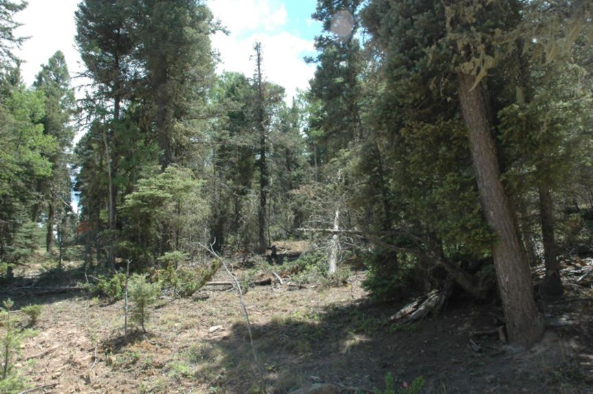 Lot 1261 San Andres Circle, Angel Fire, NM 87710