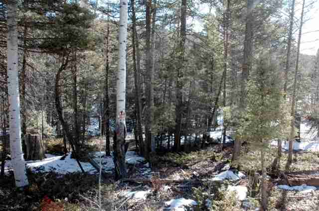Lot 368 El Camino Real, Angel Fire, NM 87710