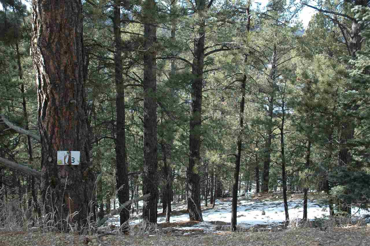 Lot 13 Snowmass Rd, Angel Fire, NM 87710