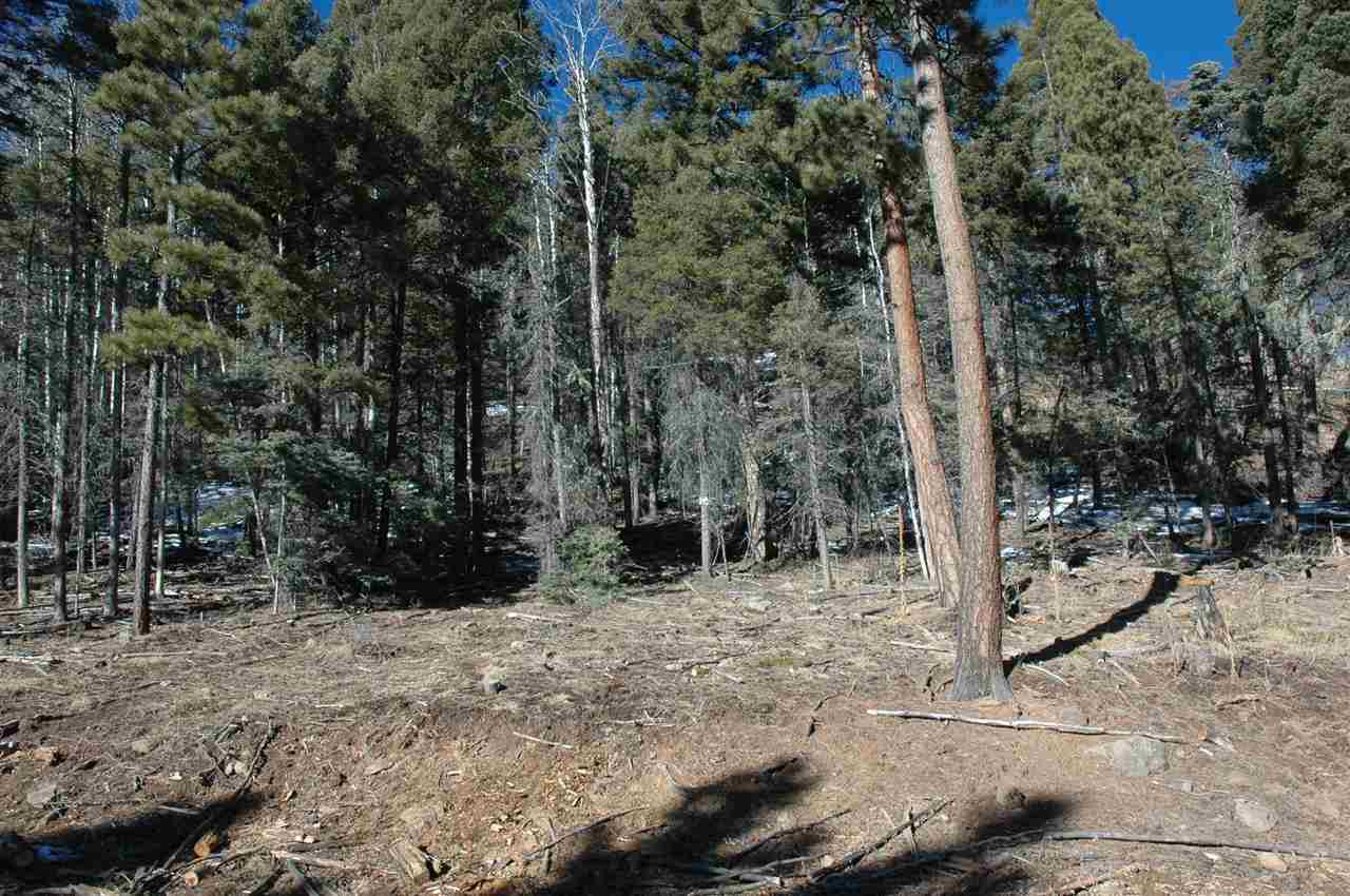 Lot 1453 AFCC I, Angel Fire, NM 87710