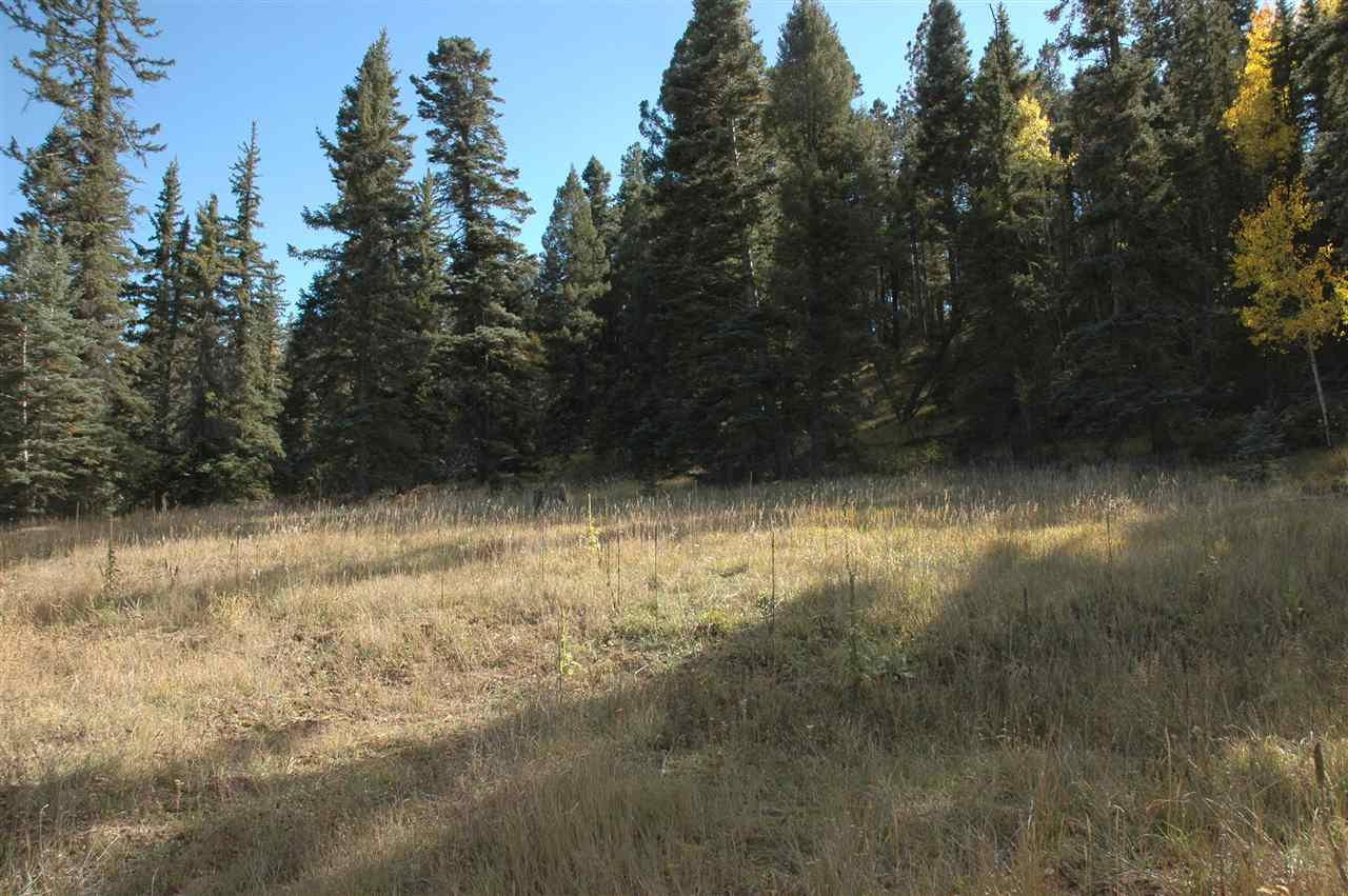 lot 1654 el vado way, angel fire, NM 87710