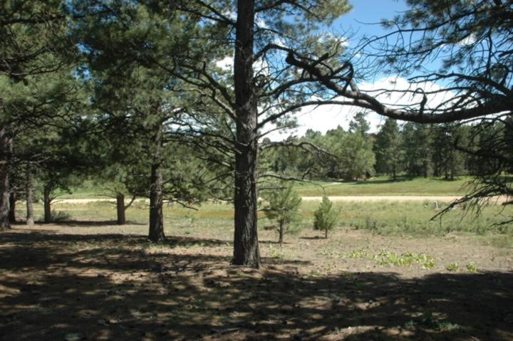 Lot 1251 Nelson Circle, Angel Fire, NM 87710