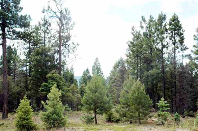 1152 Cochiti Circle, Angel Fire, NM 87710