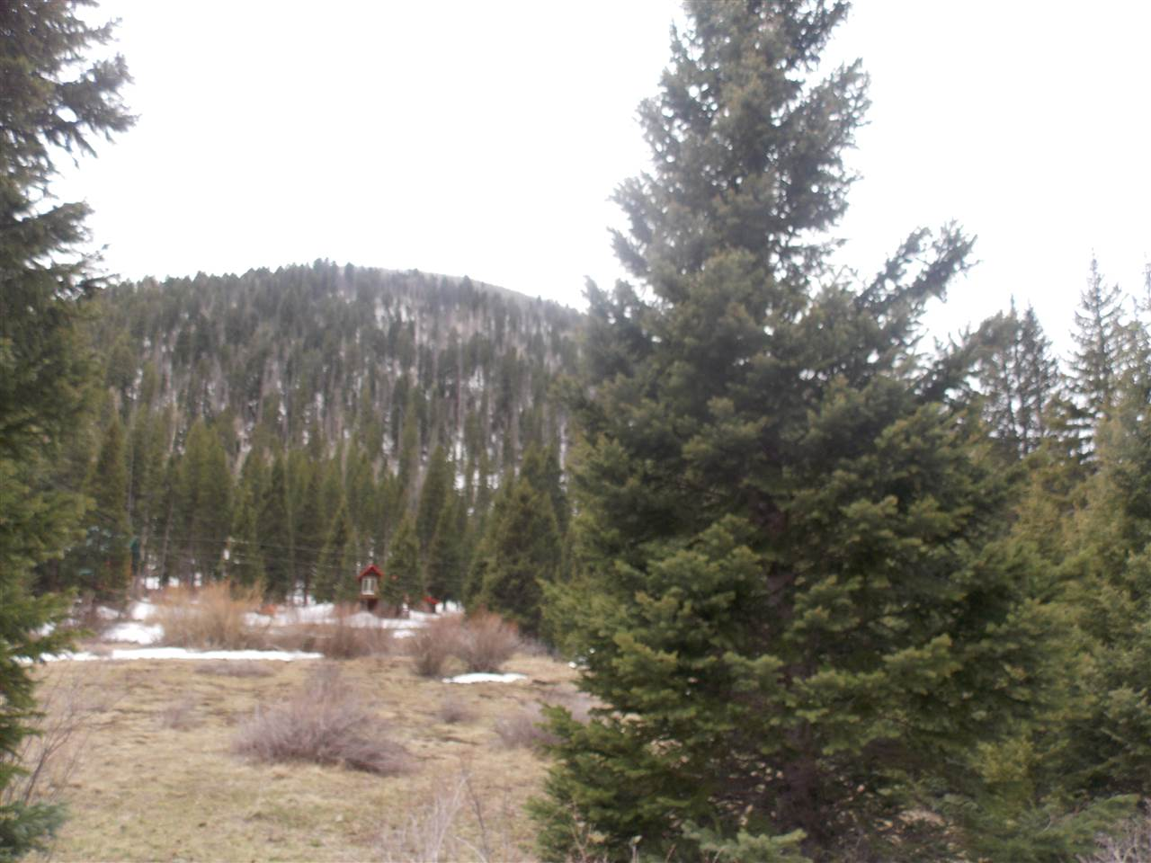 Wheeler Peak Road, Red River, NM 87558