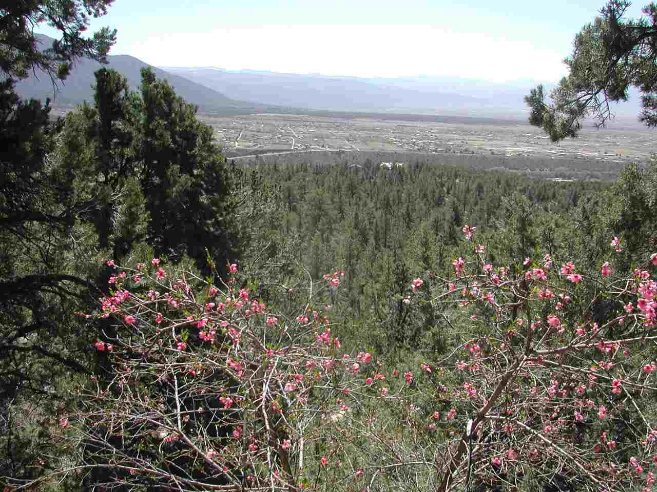 180 Reach Rd, Valdez, NM 87580