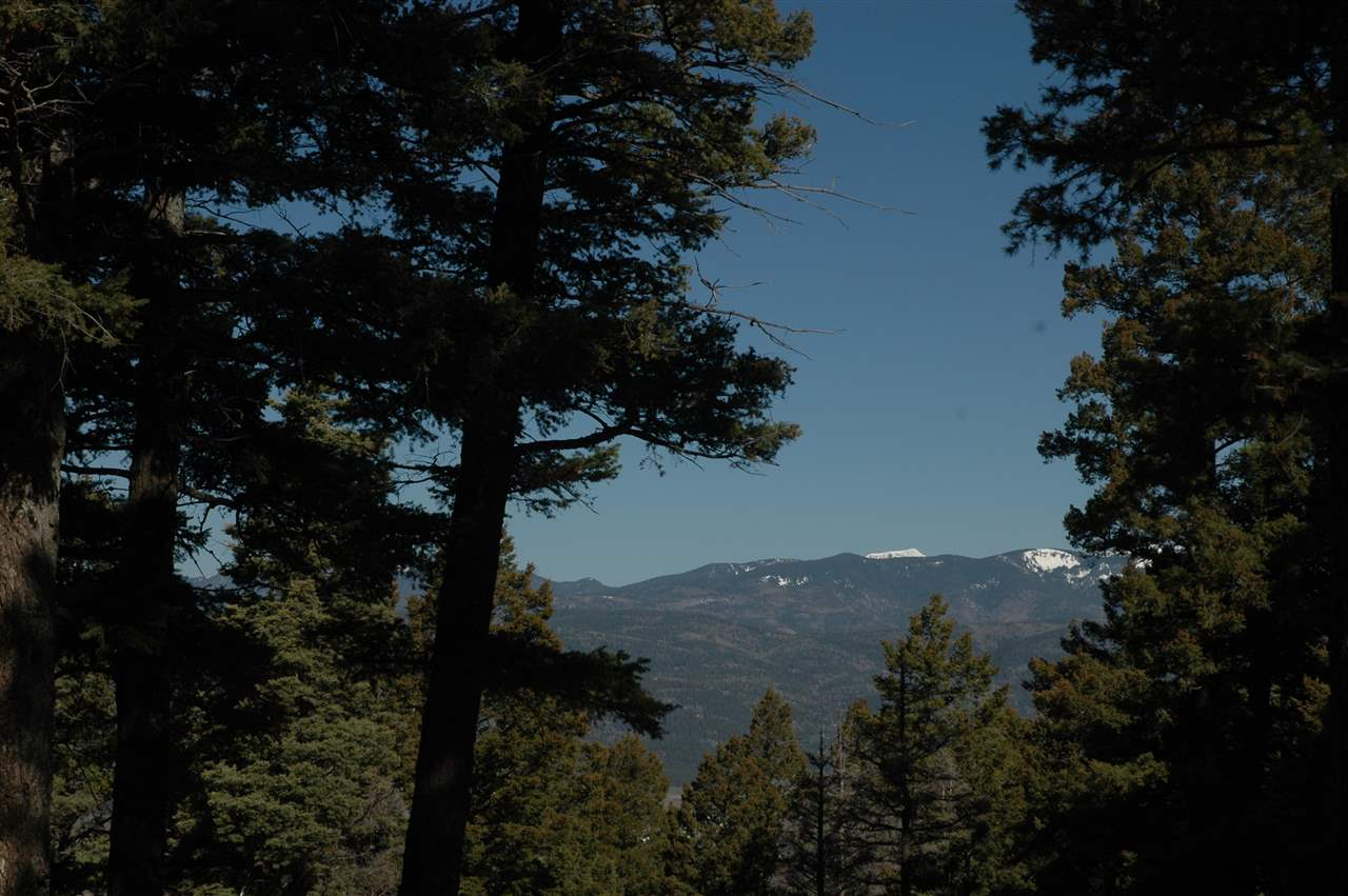 83 back basin rd, angel fire, NM 87710