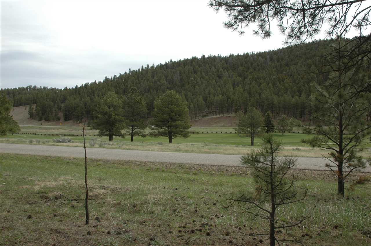 A 21 golfview ter, Angel Fire, NM 87710