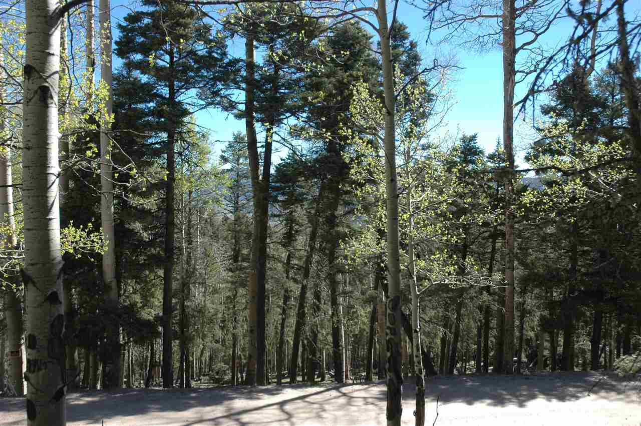 1421 sacromento, Angel fire, NM 87710