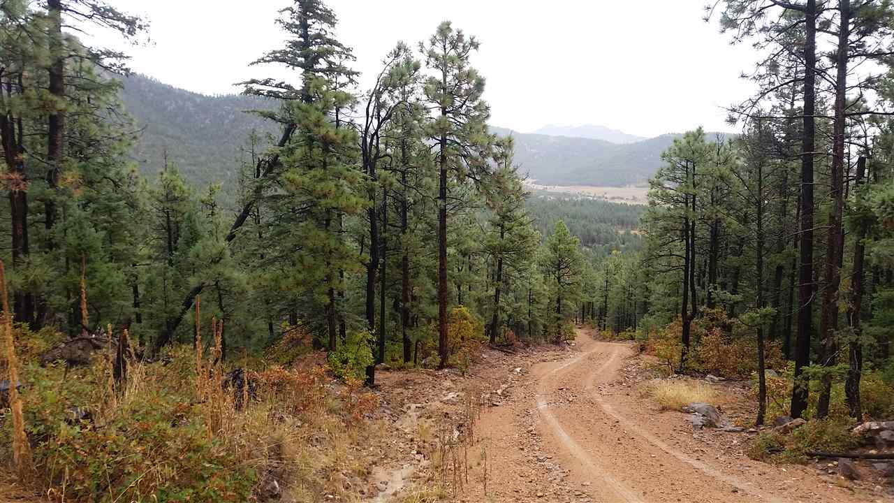 Tract 16 Trumball Canyon Road, Mora, NM 87732