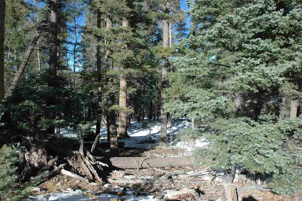 lot 8 Chalets I Back basin rd, angel fire, NM 87710