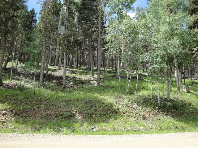 Lot 1283 Via del Rey, Angel Fire, NM 87710