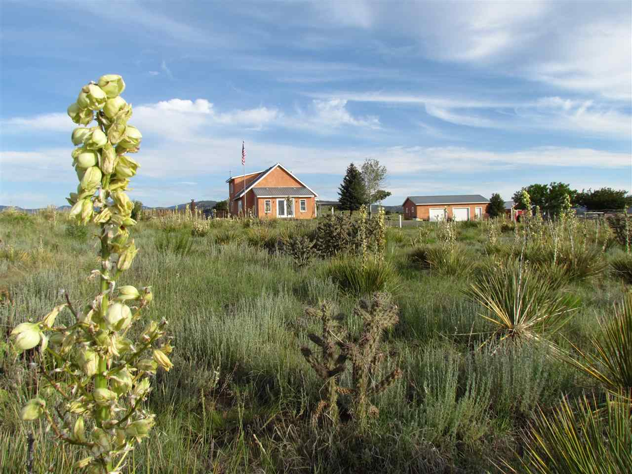 40 Mountain Meadow Rd, Cimarron, NM 87714