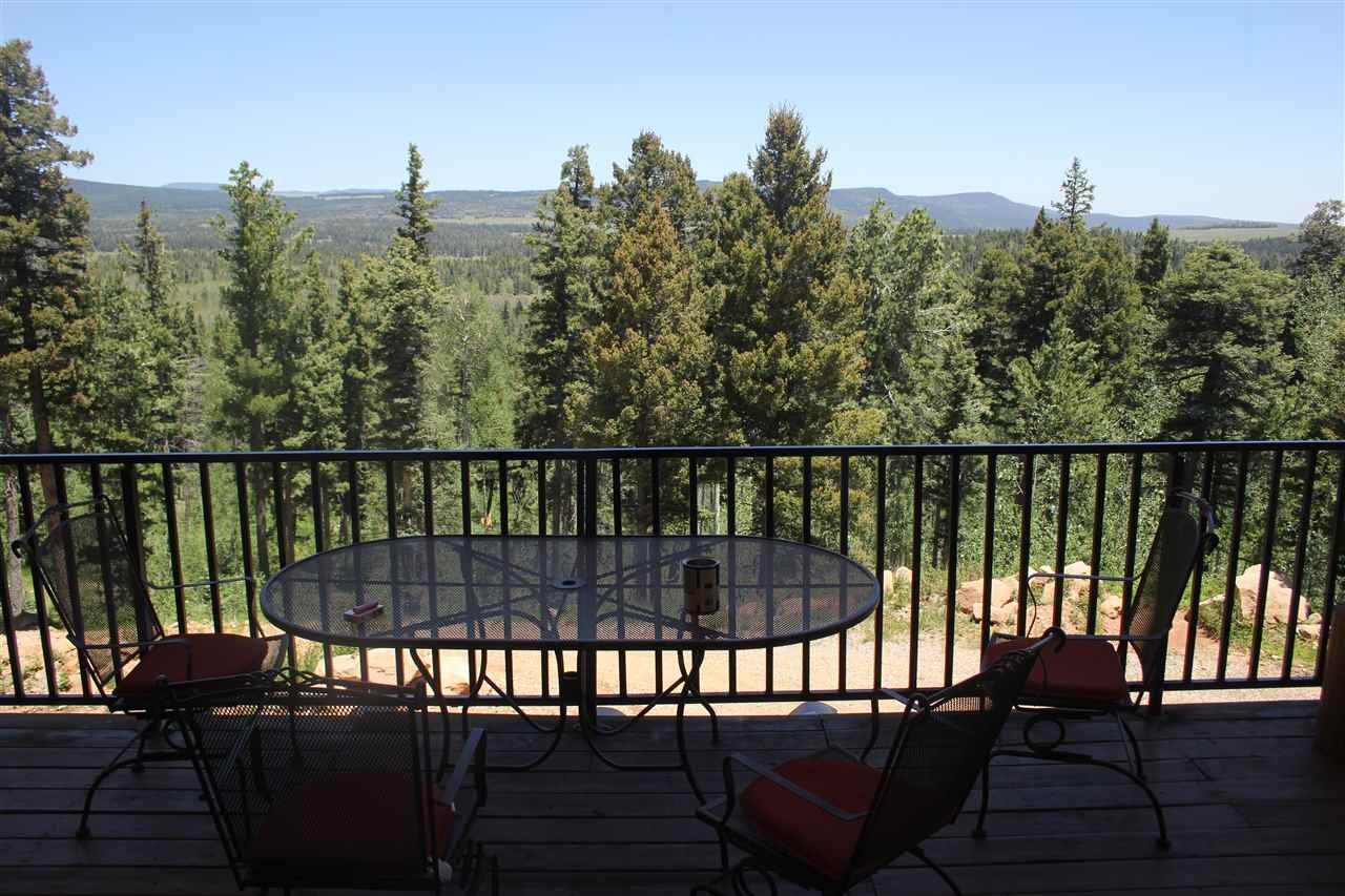 15 Bear Paw, Black Lake, NM 87722