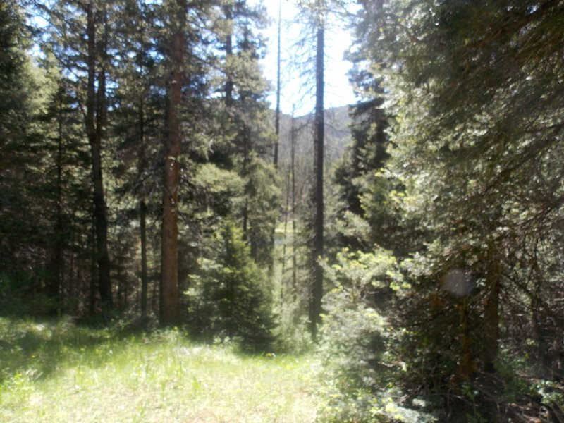 Lot 118 and 119 Wheeler Peak, Red River, NM 87558