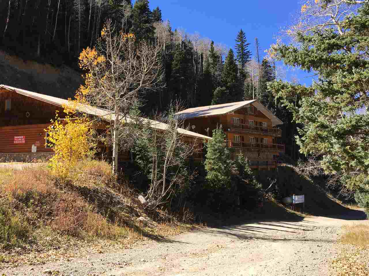 22 Firehouse, Taos Ski Valley, NM 87515