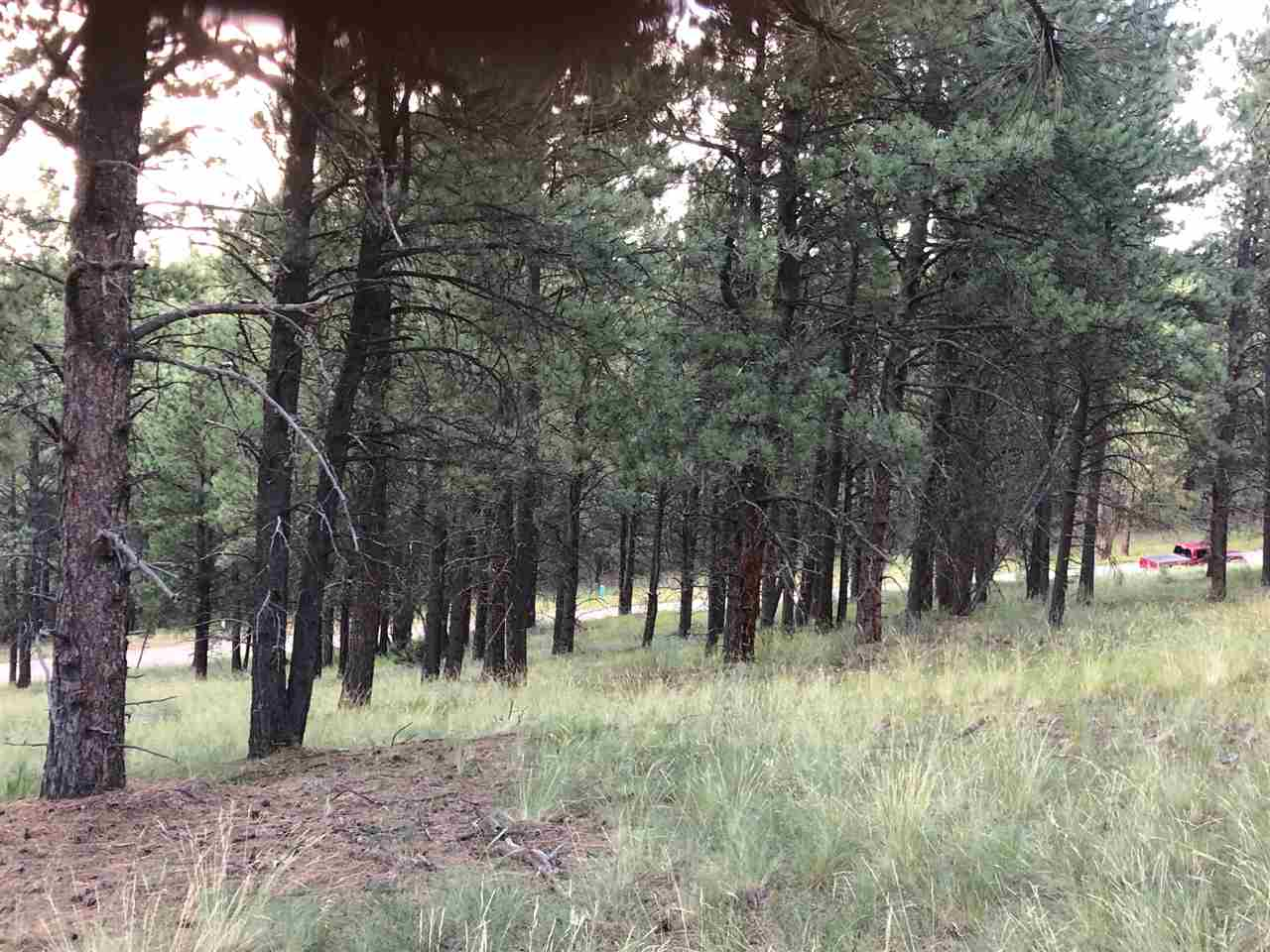 Lot 60 Valley Road, Angel Fire, NM 87710