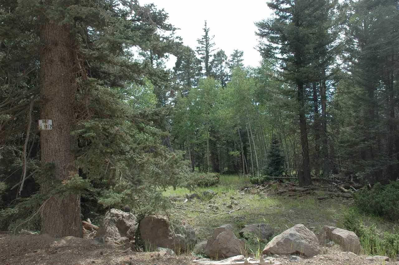 lot 1012 el camino real, angel fire, NM 87718