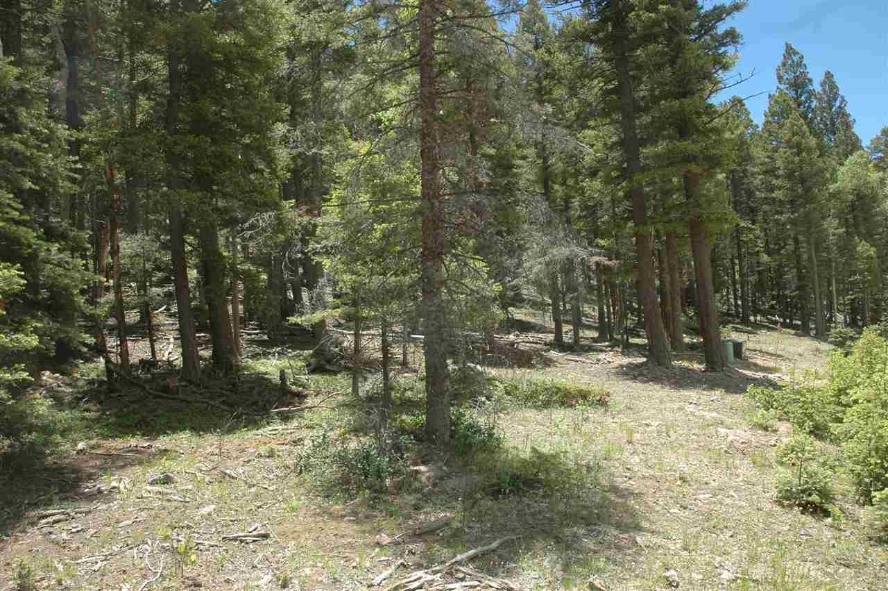lot 153 back basin rd, angel fire, NM 87710
