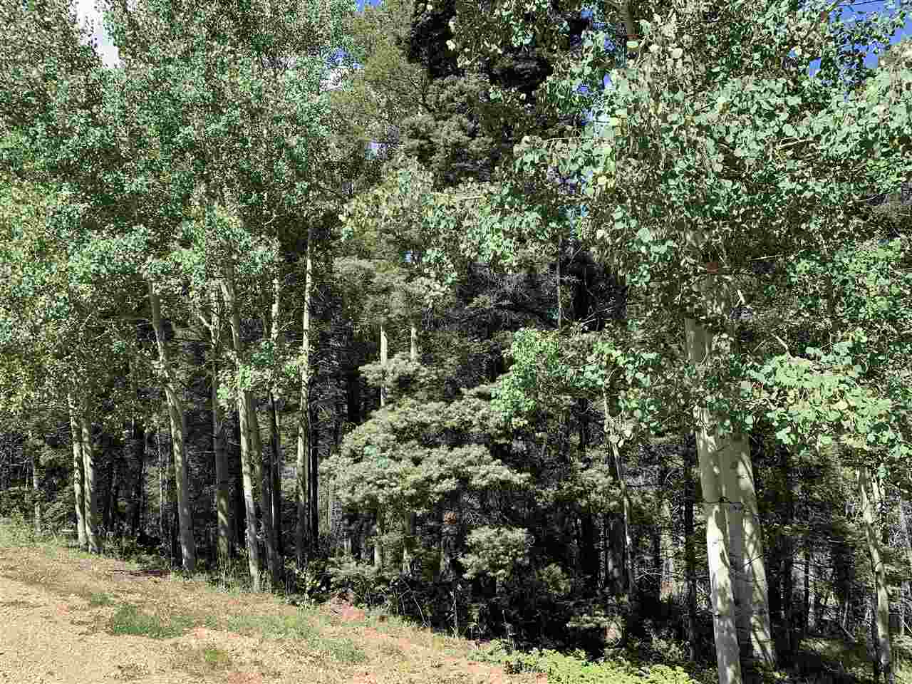 Lot 41 Back Basin Rd, Angel Fire, NM 87710
