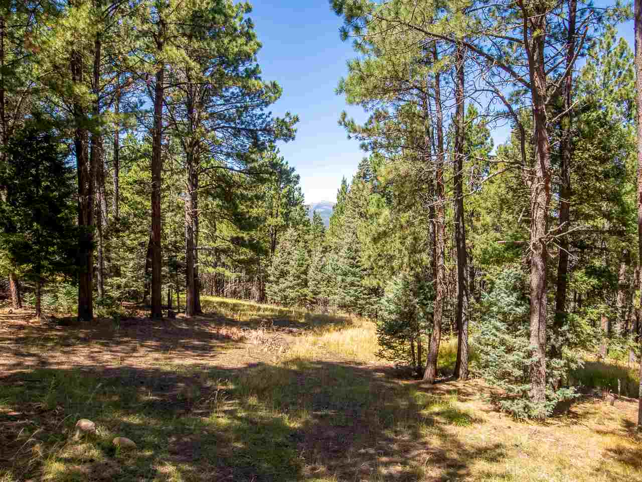 80 Valle Grande Trail, Angel Fire, NM 87710