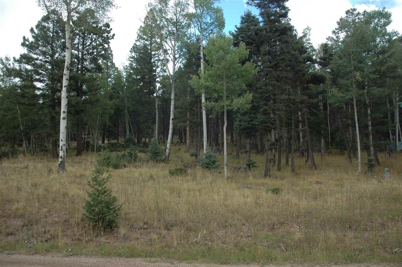 441 el camino real, angel fire, NM 87710