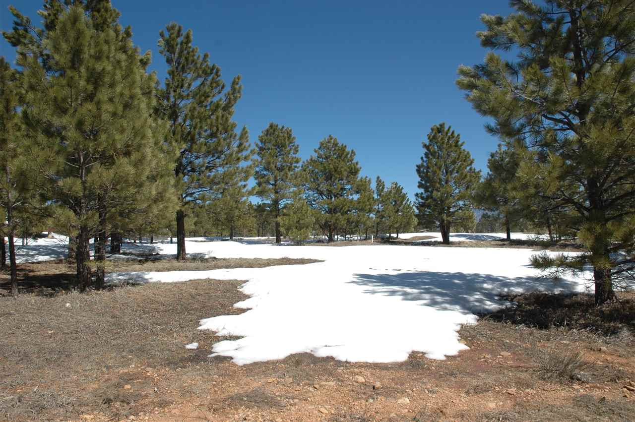 11 Norte rd, angel fire, NM 87710