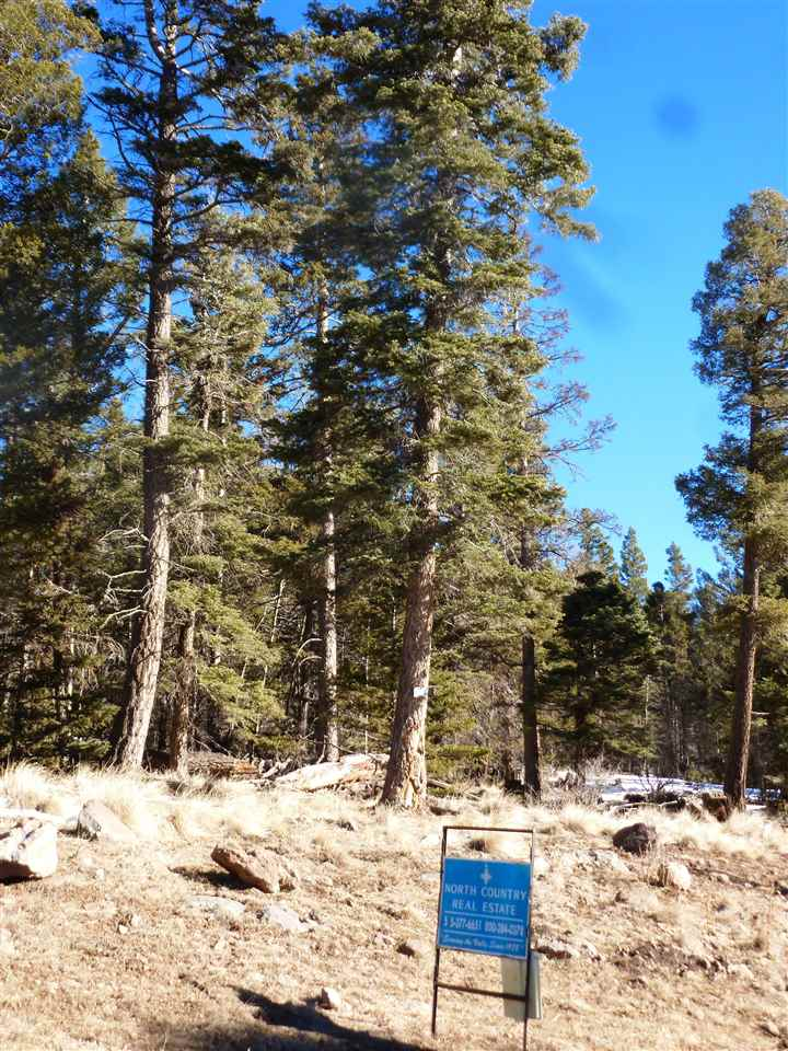 El Camino Real Lot 1386, Angel Fire, NM 87710