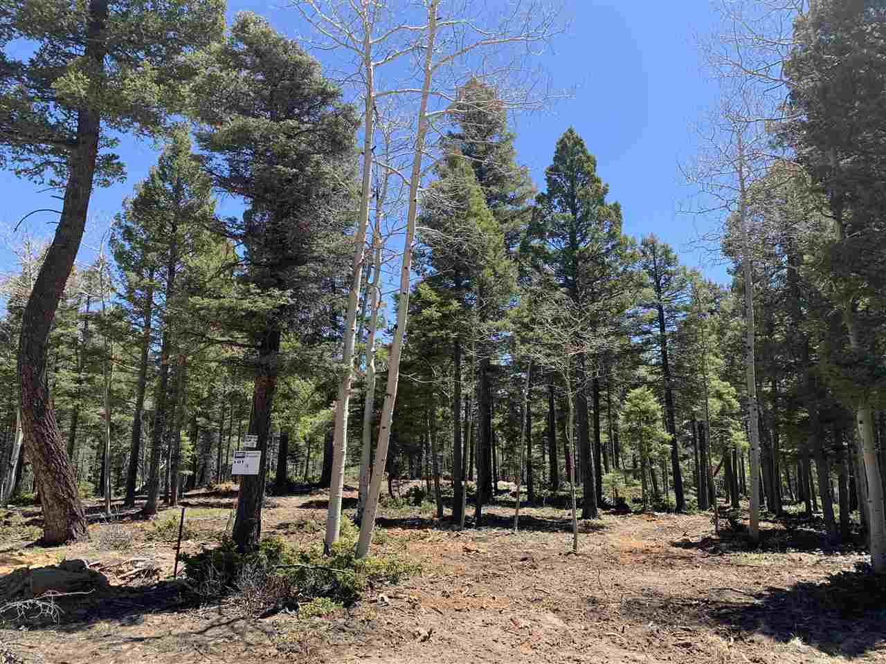 VERMEJO CIR, Angel Fire, NM 87710