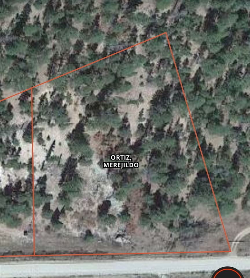 TBD Cabresto Canyon Rd, Questa, NM 87556