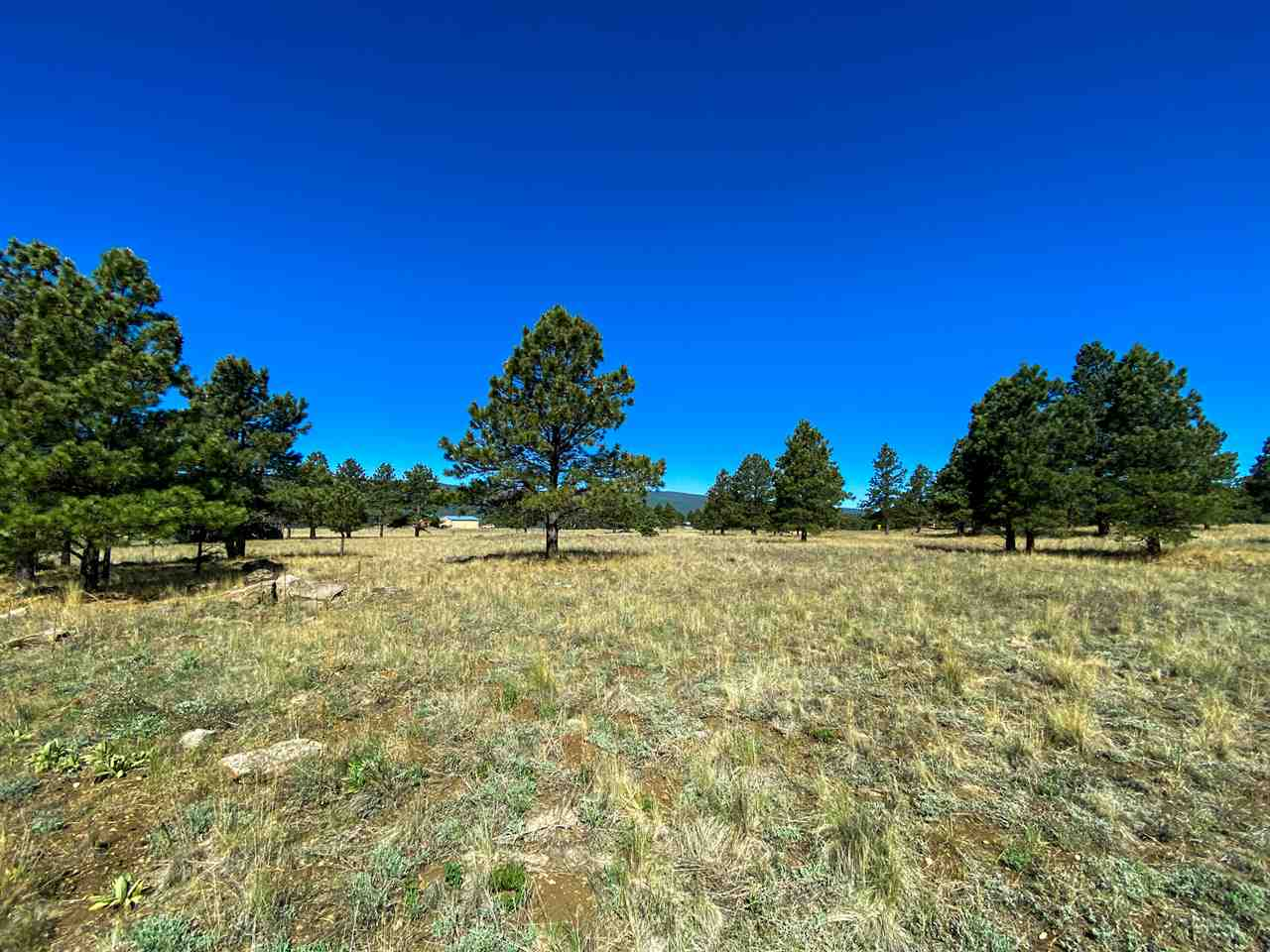 Lot 34 Camino De Norma, Angel Fire, NM 87710