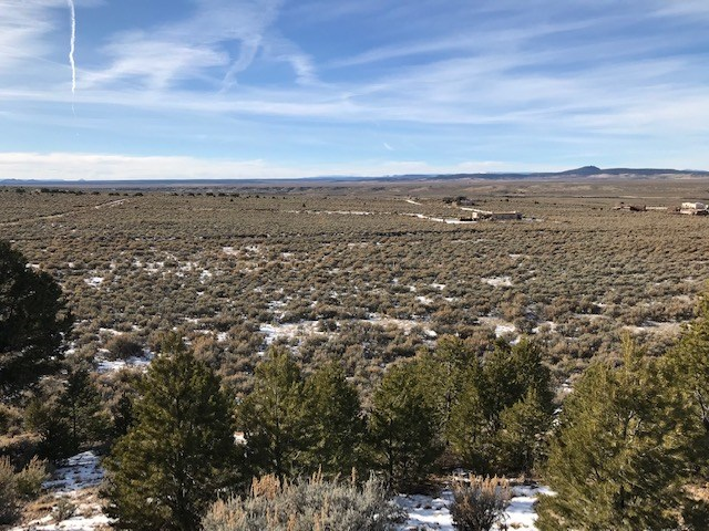 TBD Tract II Off County Road 110, Ranchos, NM 87557
