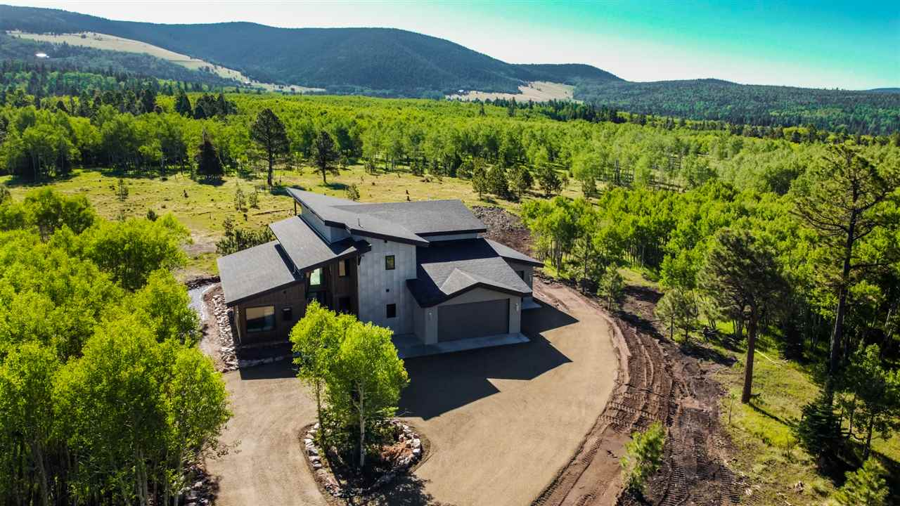 31 Beaver Loop, Angel Fire, NM 87710