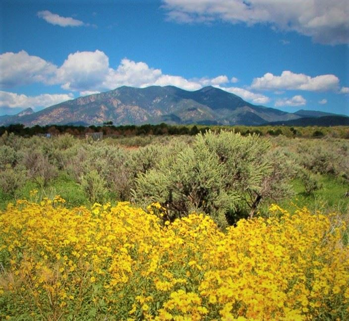 cottontail Rd, taos, NM 87571
