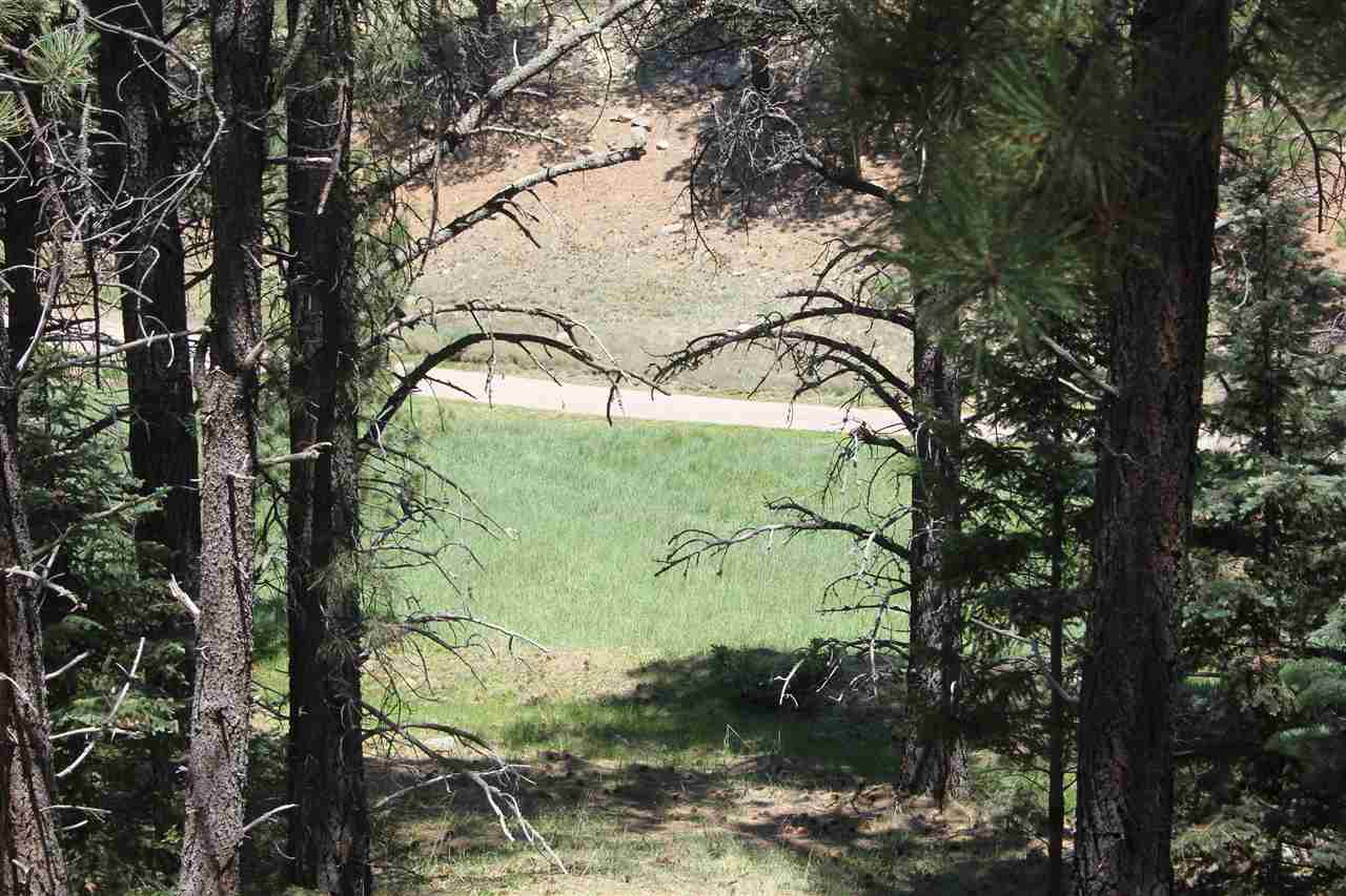 lot 1109 Spyglass Hill Rd, Angel Fire, NM 87710