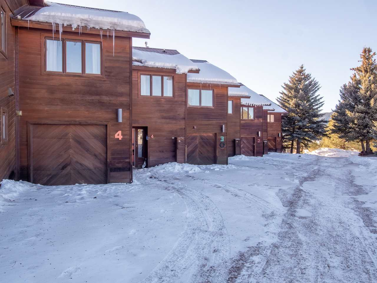 13 Arapaho Lane Windswept 4, Angel Fire, NM 87710