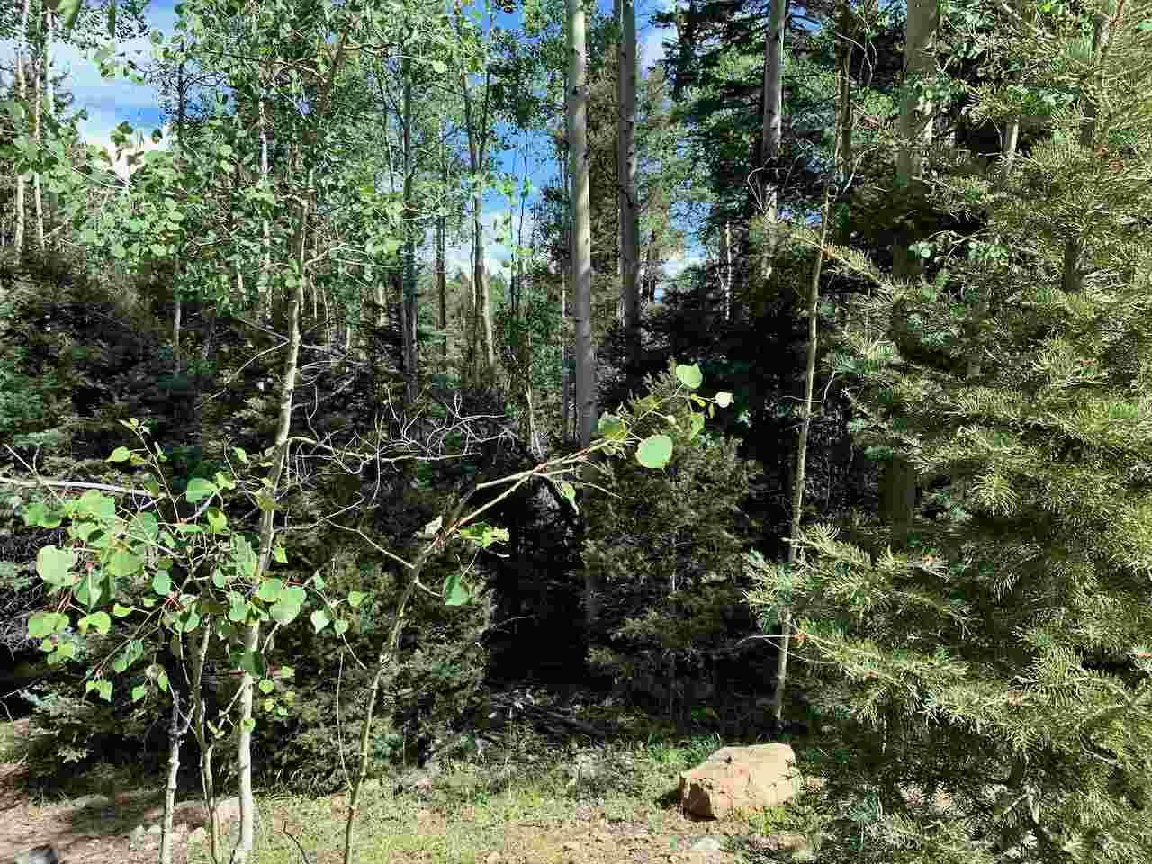 Lot 721 Santo Domingo Trail, Angel Fire, NM 87710