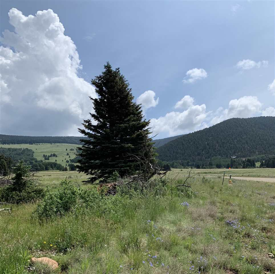 lot 77 Ute Valley Road, Angel Fire, NM 87710