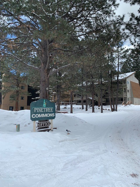 64 Mammoth Mountain Rd, Angel Fire, NM 87710