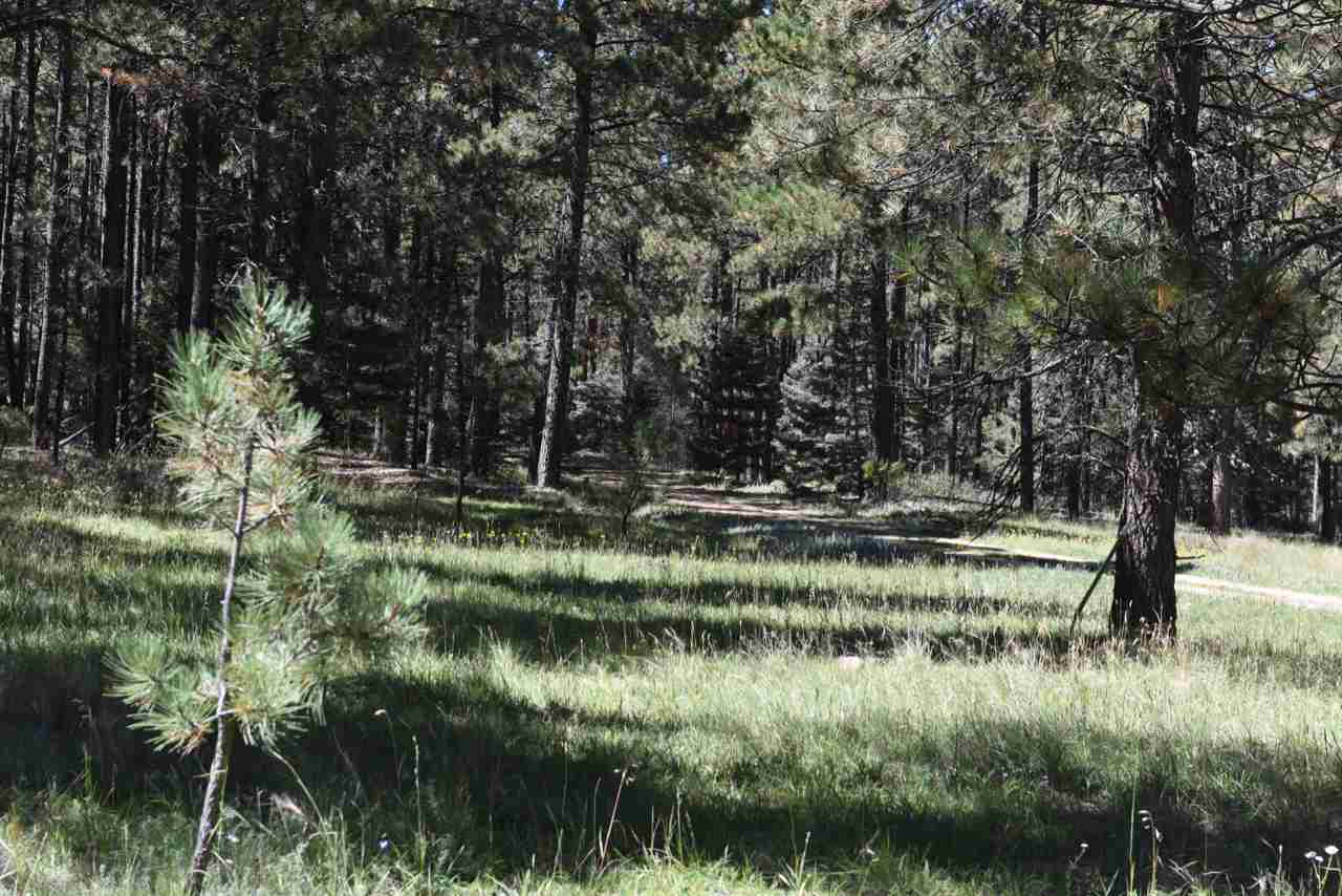 Lot 20 Corner Park Rd, Angel Fire, NM 87710