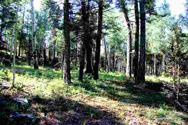 Lot 1229R Rainbow Overlook, Angel Fire, NM 87710