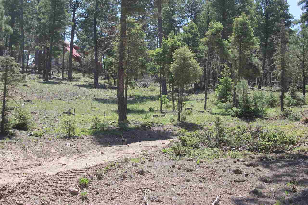 1581 Luna Drive, Angel Fire, NM 87710