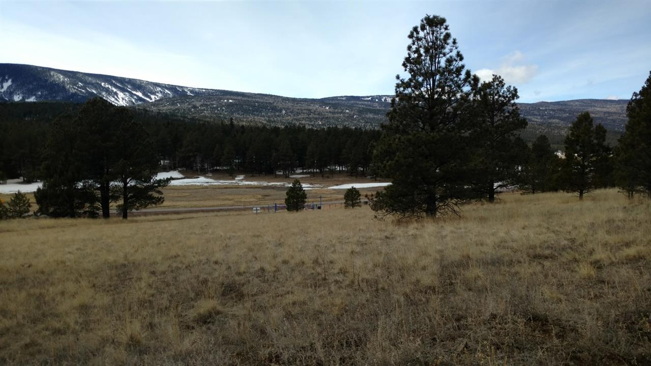 Mora Ranch Road, Angel Fire, NM 87710