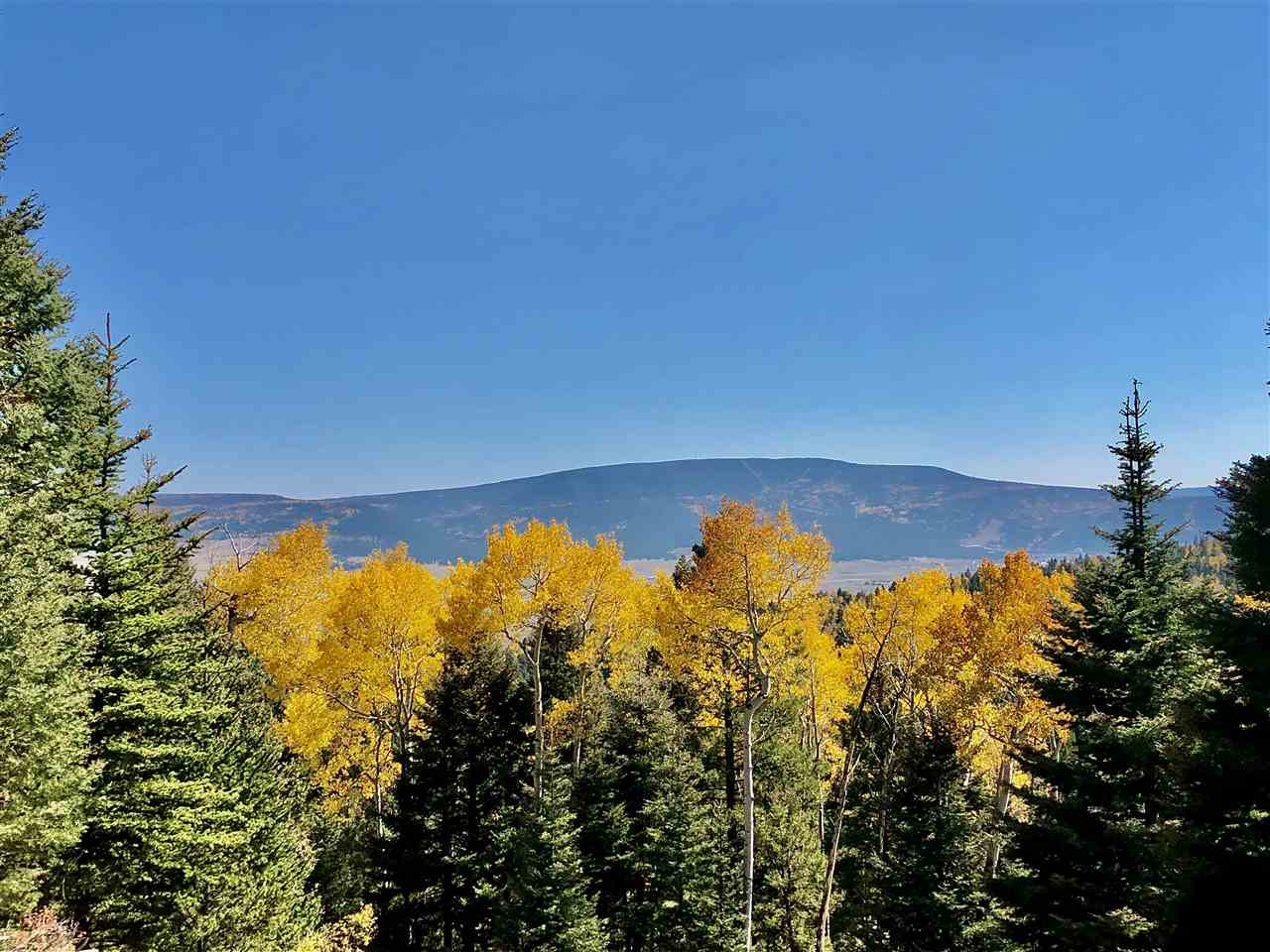 Lot 97 Pam Coleman Drive, Angel Fire, NM 87710